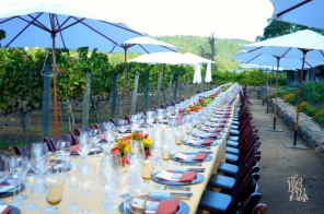 The Whet Palette Napa Valley Wine Country Itineraries-10