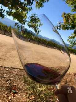 The Whet Palette Napa Valley Wine Country Itineraries-4