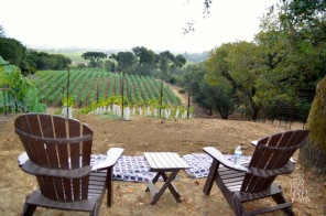 The Whet Palette Napa Valley Wine Country Itineraries-8
